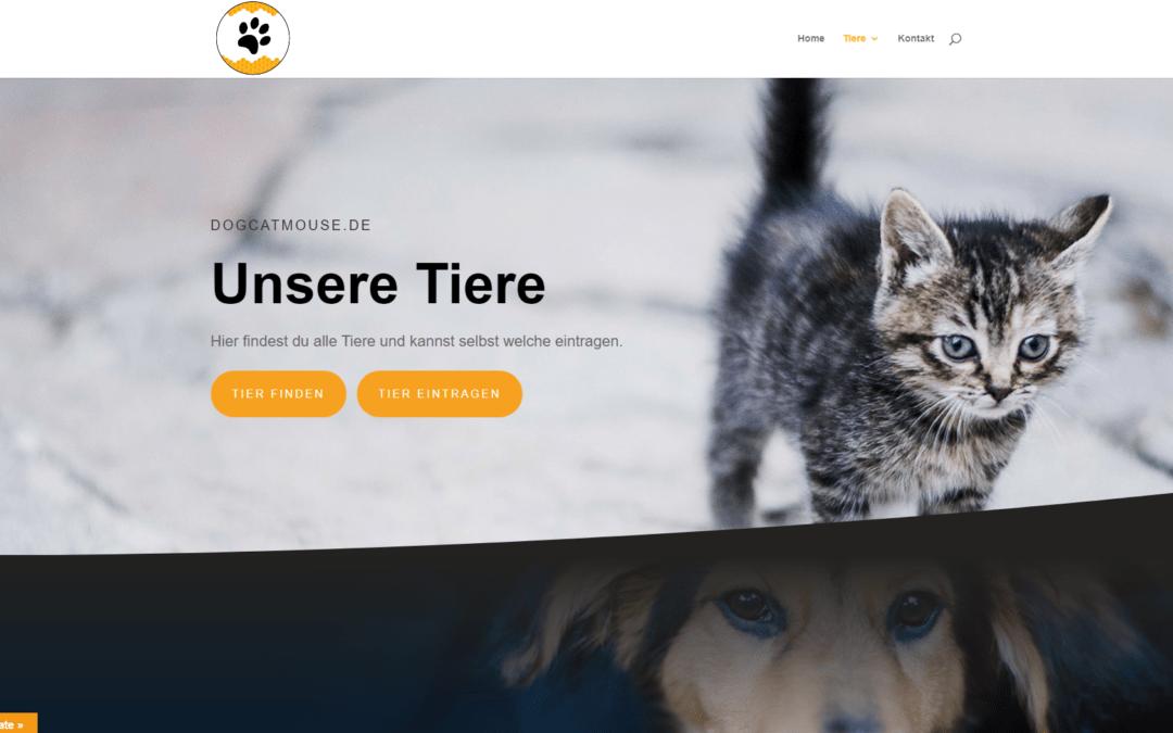 dogcatmouse.de tiere finden und suchen, haustier portal, idunatek webdesign, webentwicklung mainz, frankfurt am main, idstein, wiesbaden